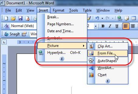 Hướng dẫn cách chèn ảnh vào file Word